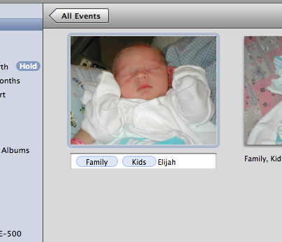 Apple Fixes keyword tagging in iPhoto '08